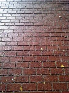 Decorative Crosswalk Brick